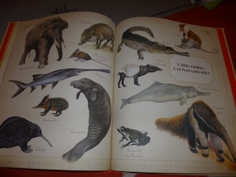 Animaux 2 - Nathan - Les lectures de Liyah
